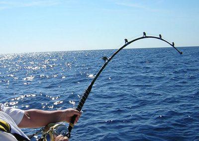 fishing-zanzibar-caught
