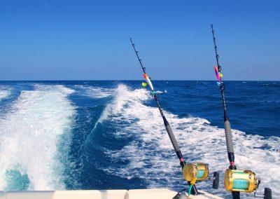 fishing-zanzibar-rod-boat